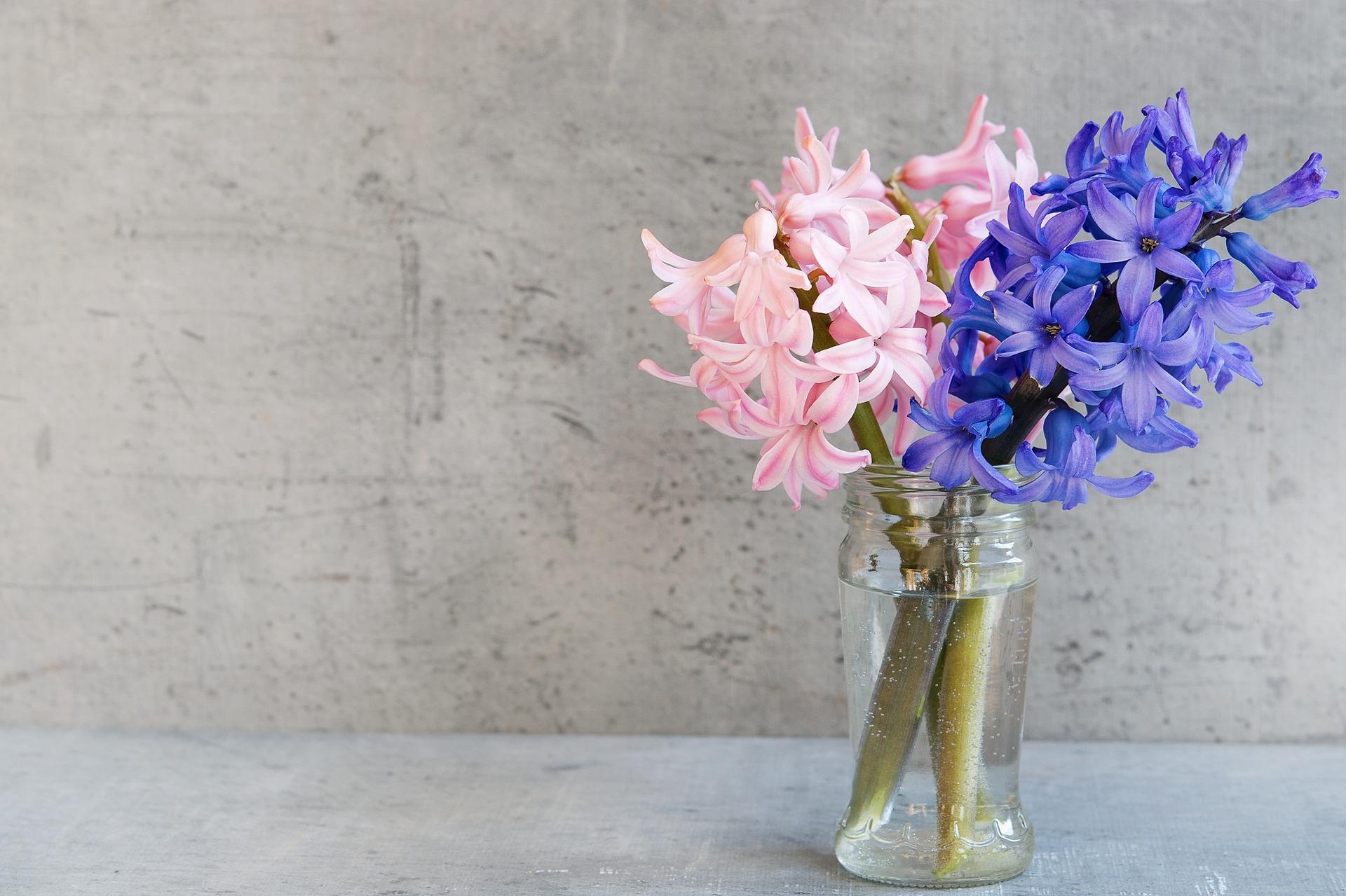 Pielęgnacja kwiatów ciętych