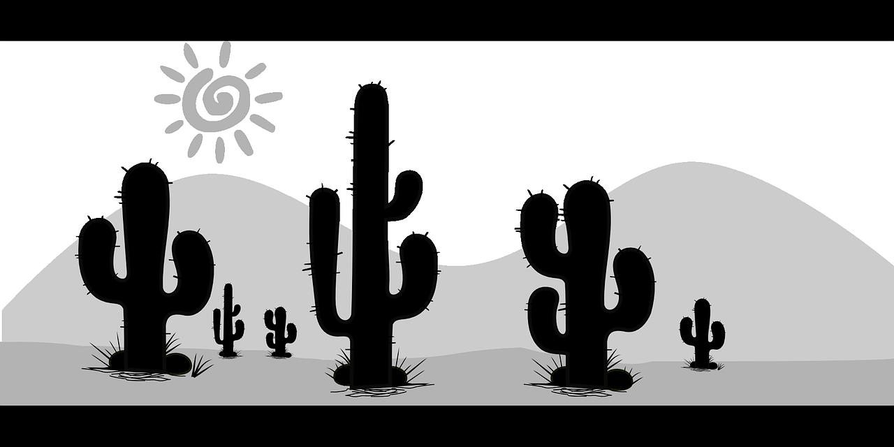 Dlaczego kaktusy mają kolce?