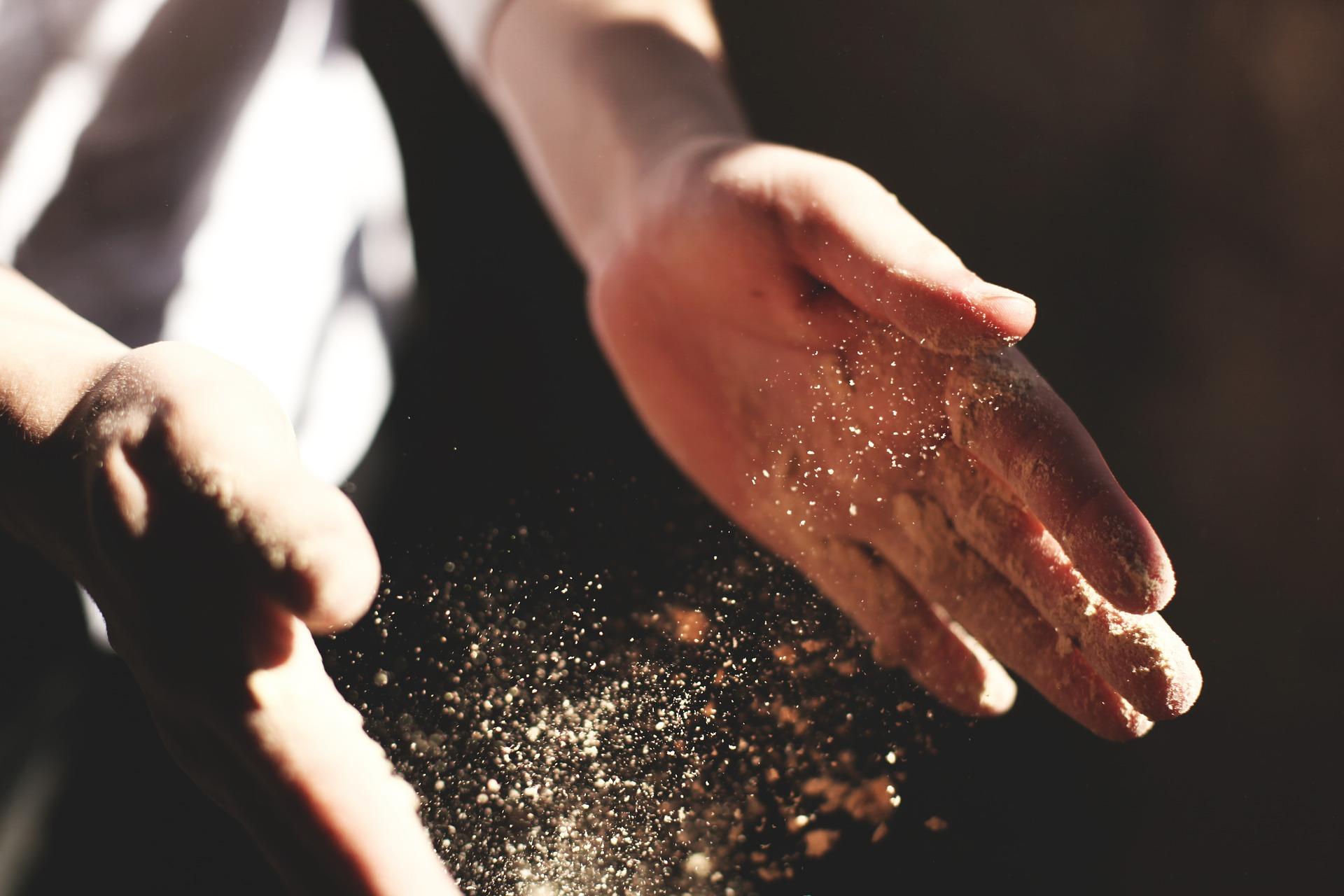 Skuteczne sposoby na mole spożywcze